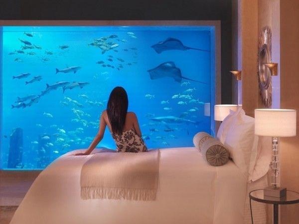 棕榈岛亚特兰蒂斯酒店  图片源自酒店官网